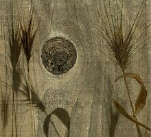 Pretty Fence and Weeds by Jane Underwood