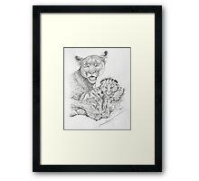 Mountain Mother Framed Print