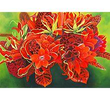 Red Vase Photographic Print