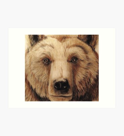 Grizzly bear - tinted charcoal Art Print