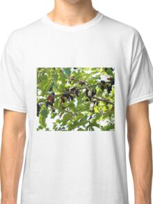 Mulberry Classic T-Shirt
