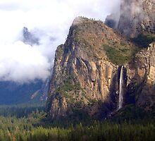 """Valley Mist"" by Lynn Bawden"