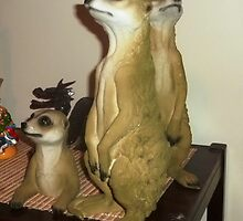 A gift for Christmas - Meerkats by EdsMum