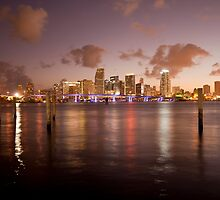 Downtown Miami at night by reisefoto