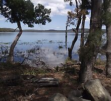 Tooms Lake (Tasmania) - tranquillity by gaylene