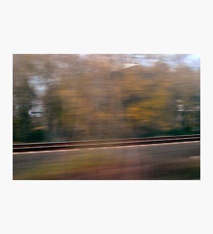 Speed Nature V Photographic Print