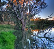 Murray Reflections - Albury , NSW - The HDR Experience by Philip Johnson