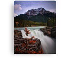 Athabasca Falls on Bow River, Alberta Canada Canvas Print