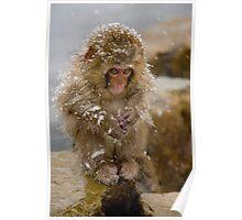 Monkey Magic #1 Poster