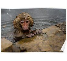 Monkey Magic #2 Poster