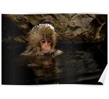 Monkey Magic #4 Poster