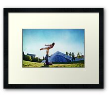 Acroyoga Fly Framed Print