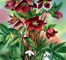 Red Hellebores and Snowdrops by Ann Mortimer