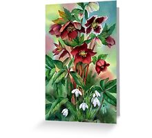 Red Hellebores and Snowdrops Greeting Card