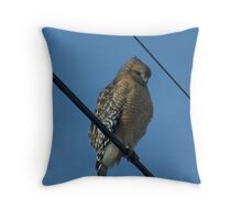 The Red-shouldered Hawk Throw Pillow