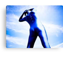 A Day in Blue Zentai lomo 05 Canvas Print