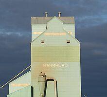 Barrhead Elevator by Kathi Huff