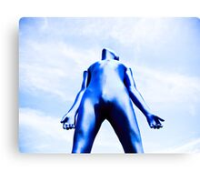 A Day in Blue Zentai lomo 07 Canvas Print