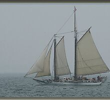 Maine | Schooner Off Stonington by Pj Renaud