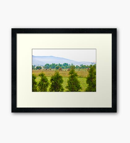 Village landscape Framed Print
