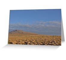 Fernacre Stone Circle Greeting Card