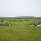 Altarnun Stone Circle by Neil Cox