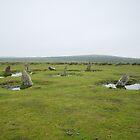 Altarnun Stone Circle by Neil Cox