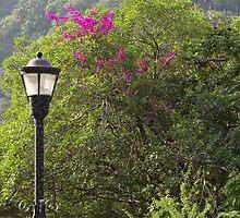 Jungle Lamp - Faro De La Selva by Bernhard Matejka