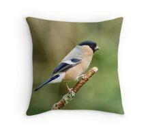 Female Bullfinch Throw Pillow