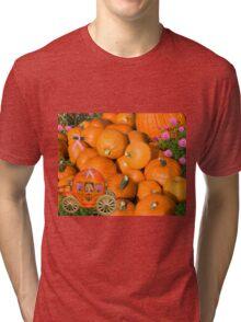 ╭∩╮( º.º )╭∩╮Ontario Pumpkins & Pumpkin Carriage ~ Raising Awareness-PILLOWS-TOTE BAGS,JOURNALS ECT.. ╭∩╮( º.º )╭∩╮  Tri-blend T-Shirt