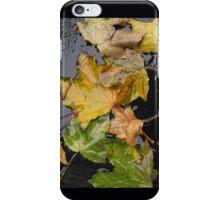 Autumn Leaves After a Rain iPhone Case/Skin