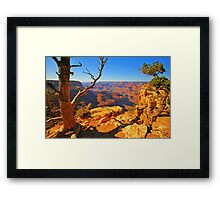 Nature`s Grand Framed Print