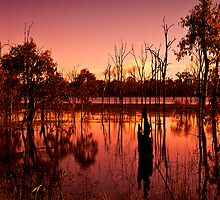 Wetland Sunset by tracielouise