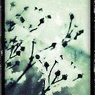Winter Wonderland by rhiannon85
