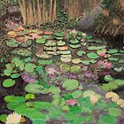 Water lilies by Sandy Clifton
