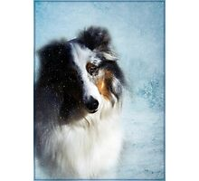 Winter Portrait Photographic Print