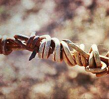 wire fence by lesanchez
