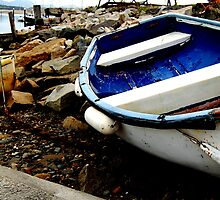 A Huddle of Old Dinghies by greatoutdoors