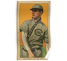Benjamin K Edwards Collection Ed Reulbach Chicago Cubs baseball card portrait Poster