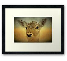 Blush Framed Print