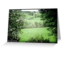 Pasture & Cows Greeting Card