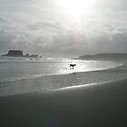 Hazy seaside by nzpixconz