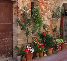 Streets of Tuscany in Summer - Casole De Elsa by Beata Morris