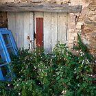 La Garde-Freinet, France by TLCPhotography