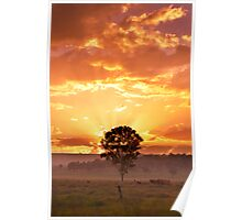 Sun Rays Above Me Poster