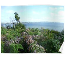 Victoria coast  Poster