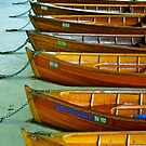 The Boats of Lake Bled by Jeannie  Mazur
