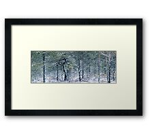2.1.2012: From the Swamp Forest Framed Print