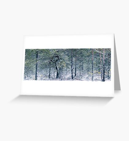 2.1.2012: From the Swamp Forest Greeting Card
