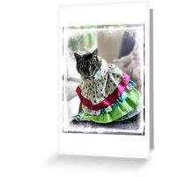 Lulu - Embarrassed! Greeting Card